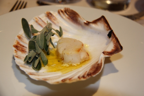 Coquille Sain-Jacques